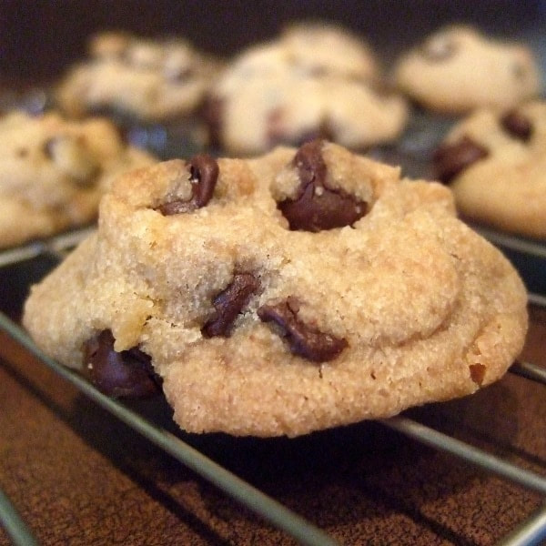 Chocolate Chip Yogurt Cookies